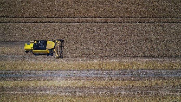 Tarımsal girdi fiyat endeksi Aralık 2020'de arttı