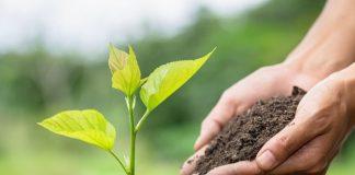 Bugün 21 Mart Dünya Ormancılık Günü