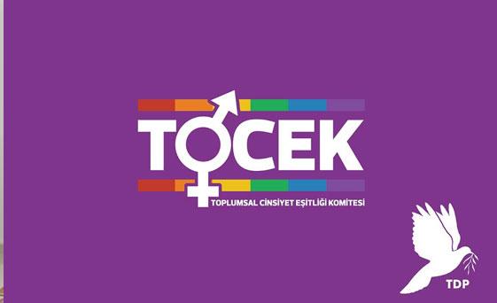 TDP TOCEK: